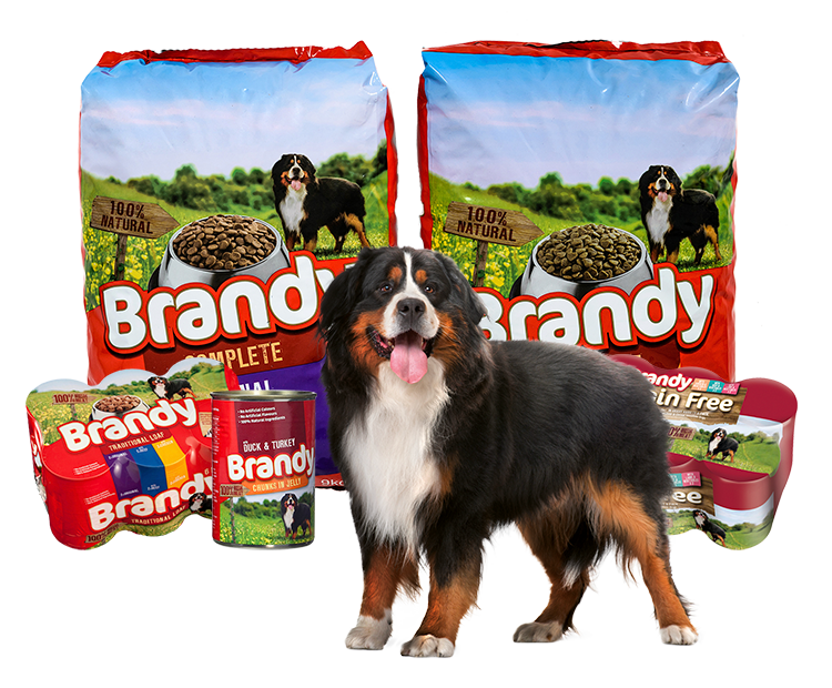 Mackle Petfoods - Brandy Dog Food