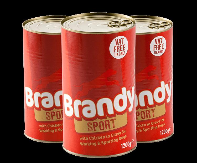 Brandy Sport